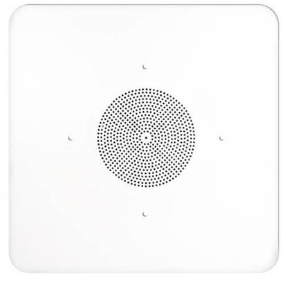 Picture of SPECO SPC-G86TG2X2 - 2'x2' G86 Ceiling Tile Speaker